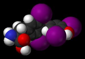 Гормоны, которые производит щитовидная железа, очень важны для здоровья