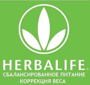 На фото показан логотип компании HERBALIFE.
