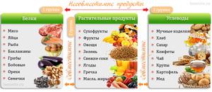 С чем употребляют белки с жирами или углеводами